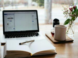 Conimicut Online Businesses